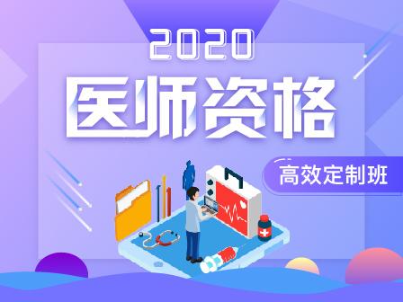 2020年医师资格高效定制班